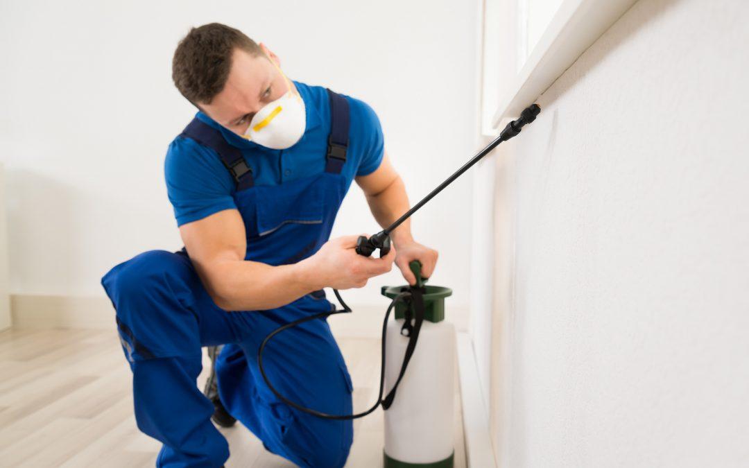 ¿Por qué estamos obligados a contratar una empresa de Control de Plagas? Reglamento CE nº 852/2004